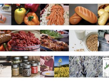 Dlaczego powinniśmy unikać żywności skażonej glifosatem?